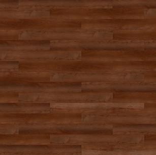 勃艮第棕橡