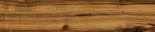 楓丹金木單片圖