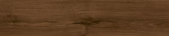 瑞吉山棕橡單片圖