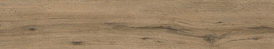 海德堡灰橡單片圖