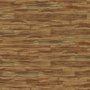 伏爾加棕橡