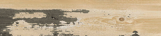 山居歲月單片圖