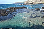 hawaii maui swimmers seastars tide pool ocean tropical