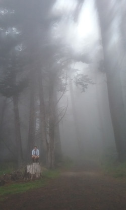 misty forest and a hiker in Poli Poli State Park, Maui, USA
