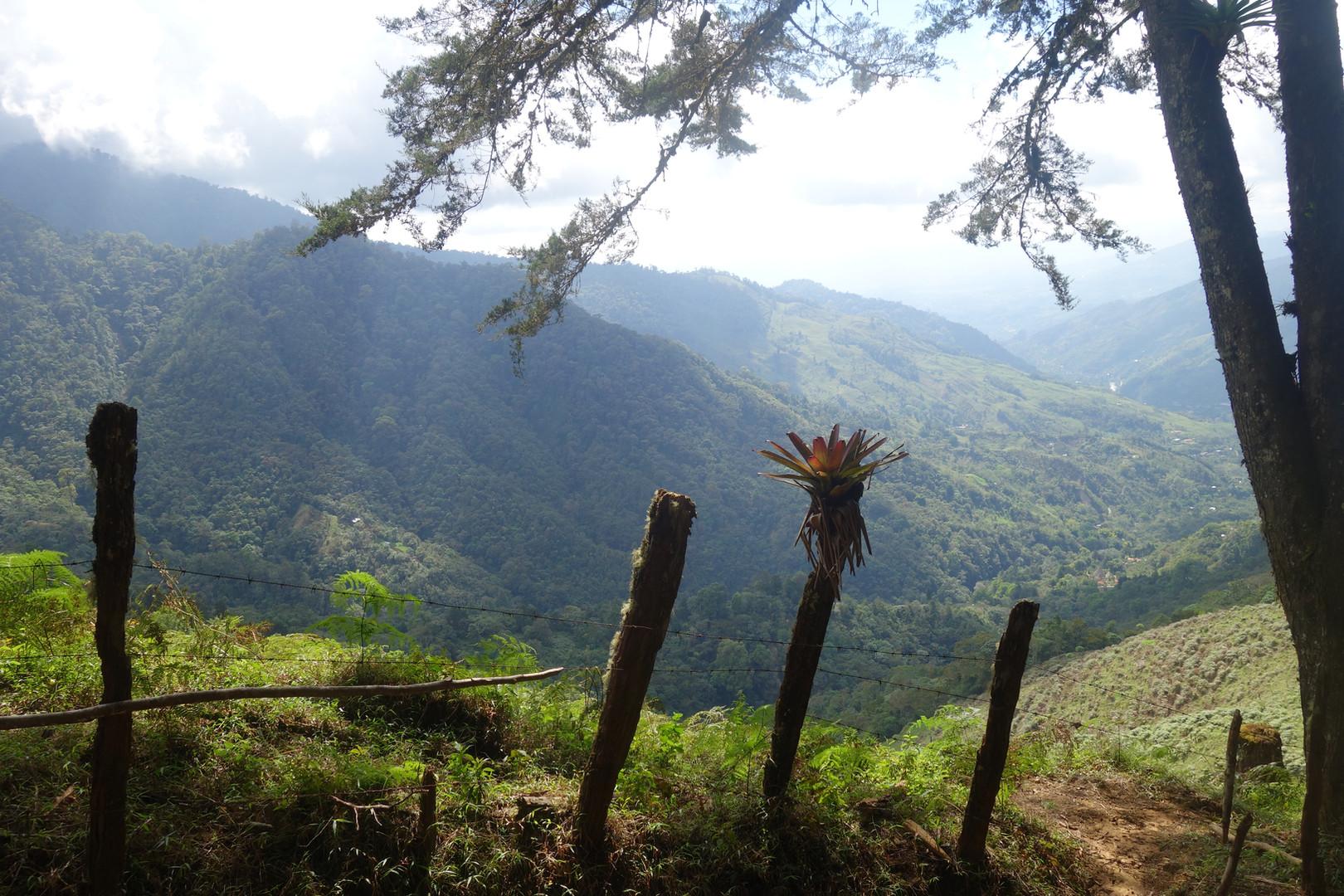 Costa Rica Cerro Chirripo valley
