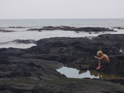 a little boy fishing in a tidal pool near Kailua-Kona, Big Island, Hawaii, USA