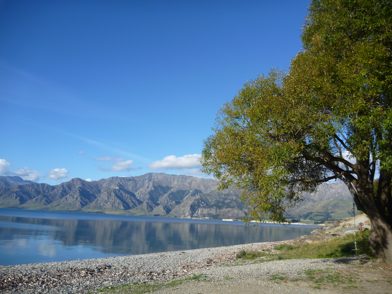 Lake Wanaka, South Island, New Zeala