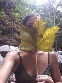 a woman's face mostly obscured by a giant leaf nearWest side, Maui, USA