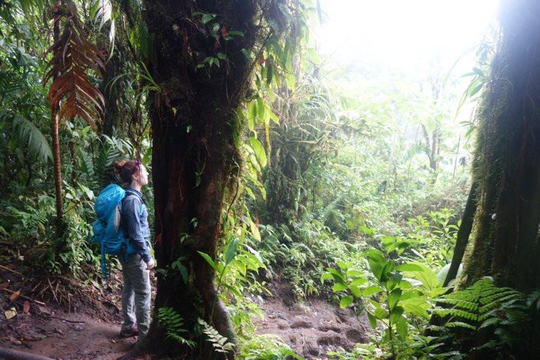 cerro chato volcano hike 4