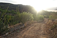 A dirt road in the desert with the sun shining in the backround