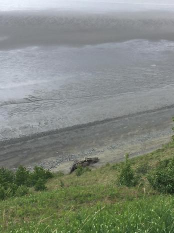 destination run tony knowles coastal trail alaska 3
