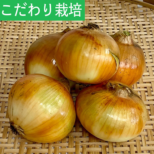 玉ねぎ(S〜L)4kg