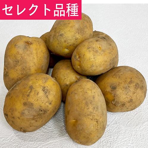 インカのめざめ(ジャガイモ)500g