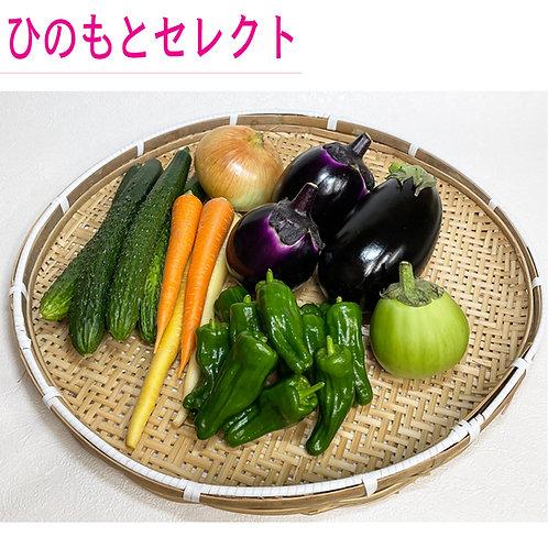 7月野菜セット