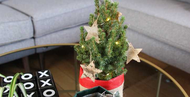 Mini Christmas tree by post the ginger jungle