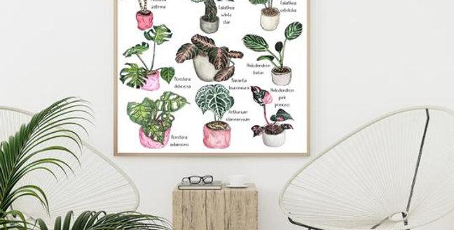 Houseplant Print