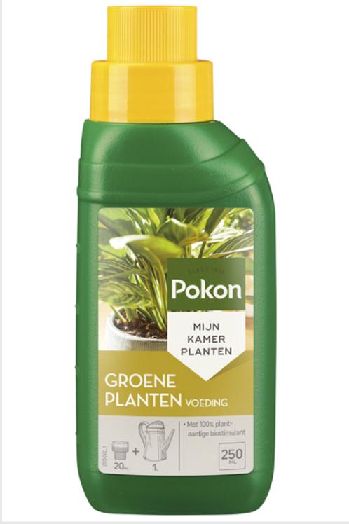 Pokon Green Plant Food