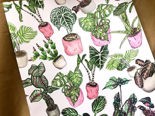 Houseplant Wrapping Paper