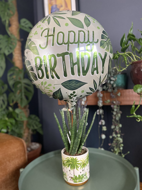 Birthday Jungle Bundle