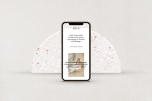 Website Design / Brooklyn Hair Artistry