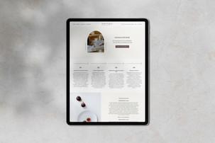 Website Design / Orenda