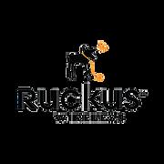Ruckus Wireless EIG PRO