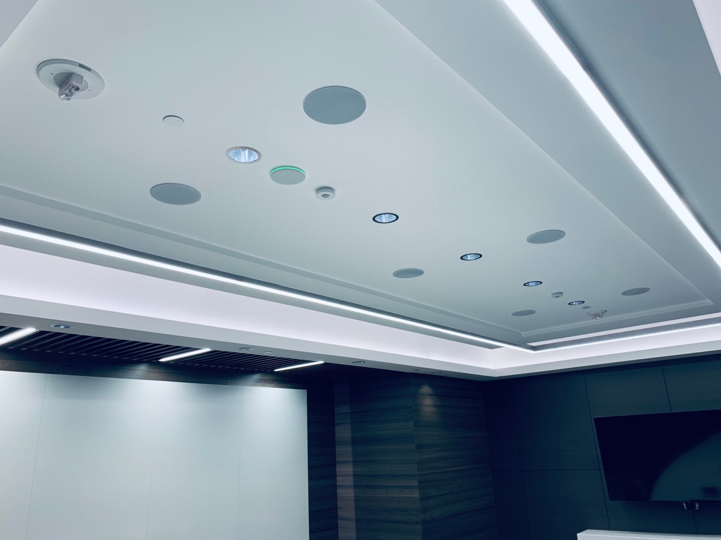 Custom Audio Video Solutions for Board Rooms