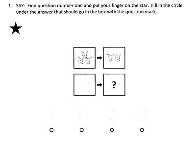 Quantitative_number analogies.png