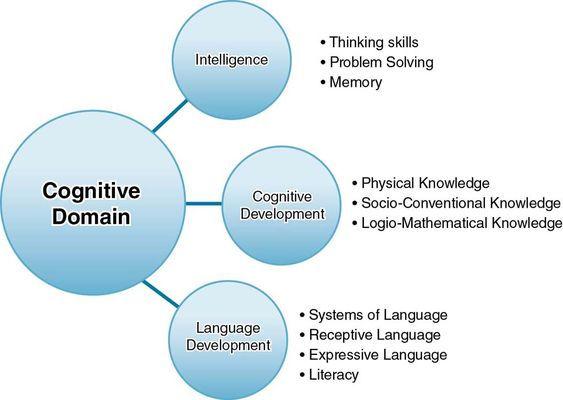 Cognitive process.jpeg