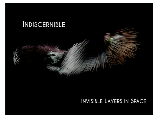 Indiscernible Concept_page-0001.jpg