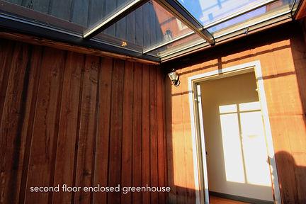 greenhouse 2.jpeg