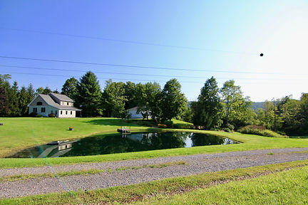 wide house and pond.jpg