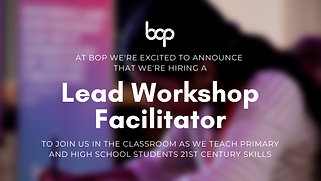 Lead Workshop Facilitator.png