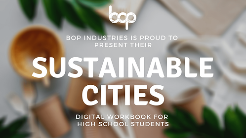 Sustainability In Our Cities Workbook - High School