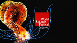 Welcome to the World Science Festival 2018!