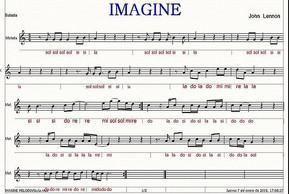 Notas flauta Imagine.