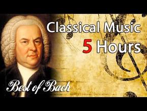5 horas con Bach