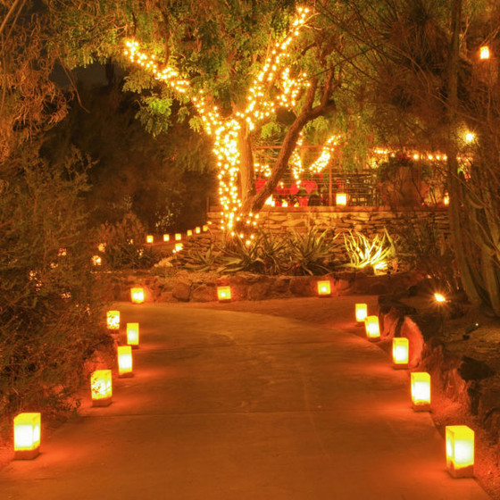 Light up your holiday season with our Luminaria Fundraiser