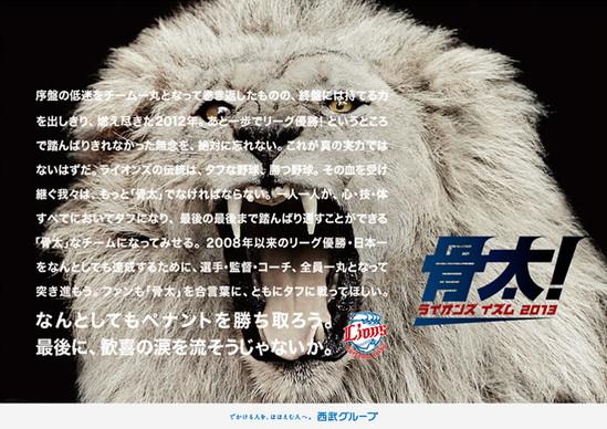 2013_lions_slogan.jpg