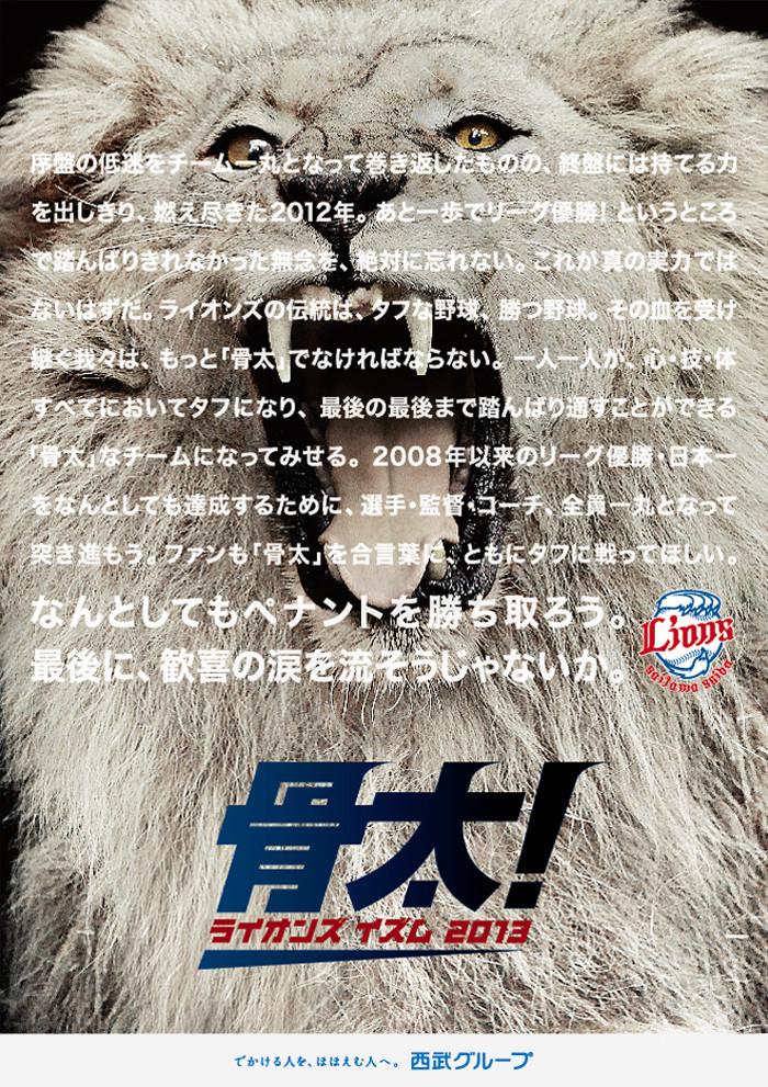 2013_lions_slogan2.jpg