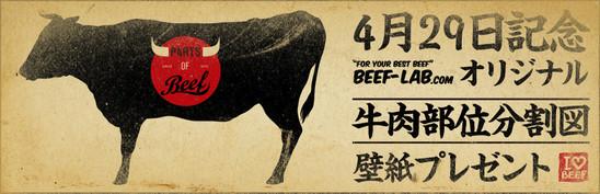 2013.4_beef_lab_works3.jpg