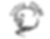 cirque logo 2 (2).png