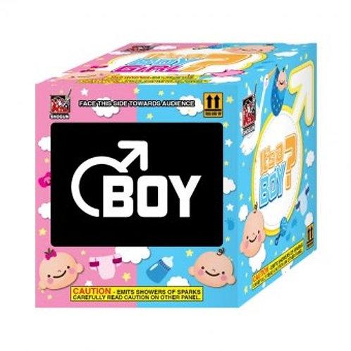 It's A Boy (Gender Reveal Fountain)