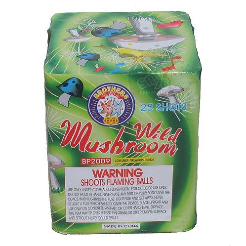 Wild Mushroom [12/1]