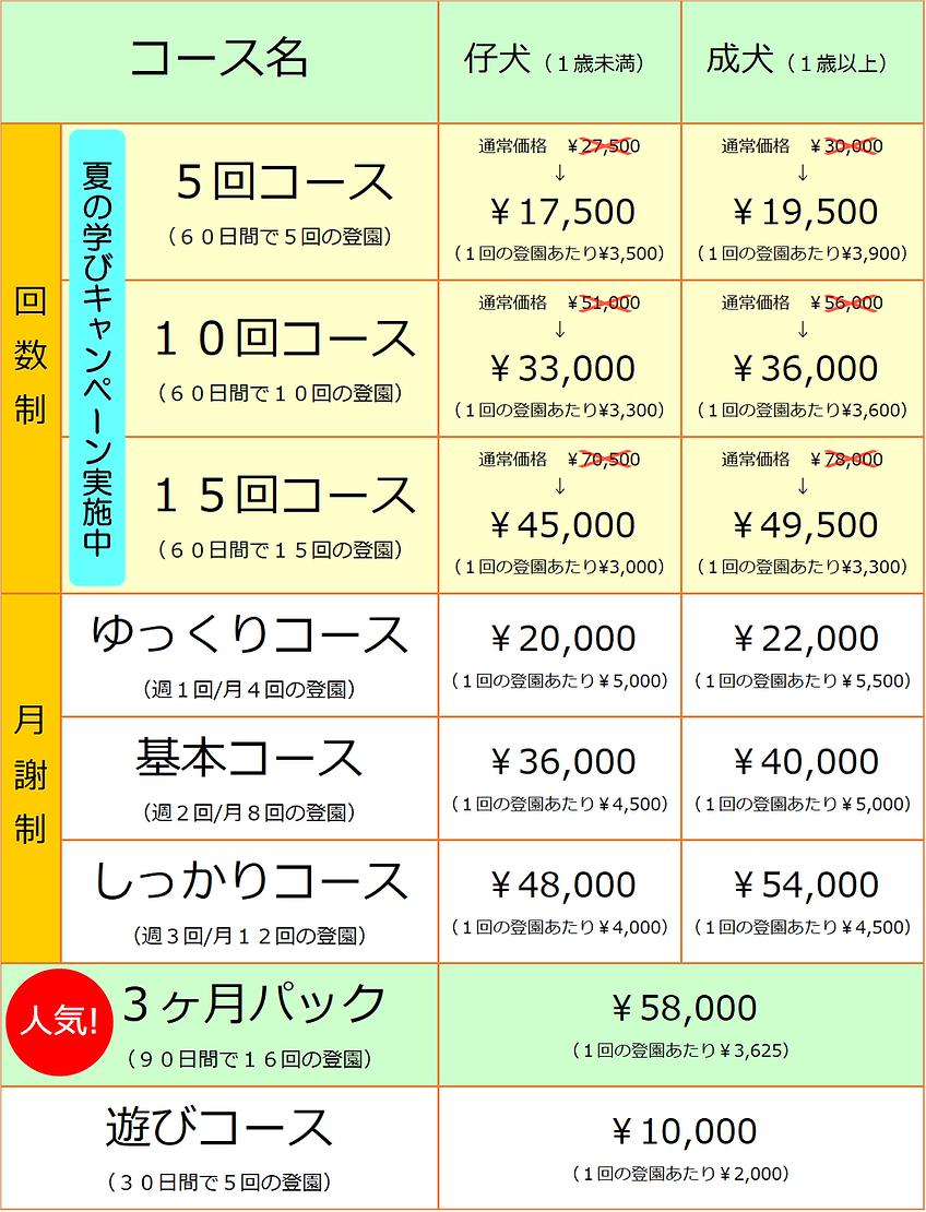 夏の学びキャンペーン【2020.06.17】.png