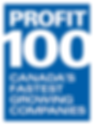 Digital Marketing Company Profit 100