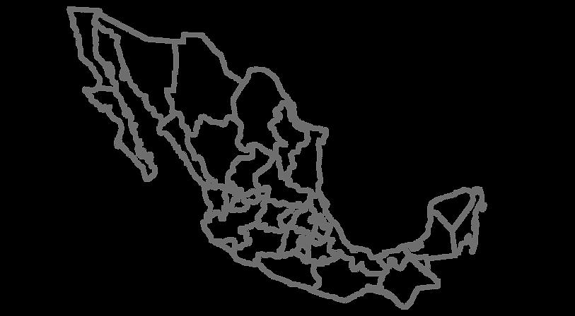 mapa_méxico_gris_9.png