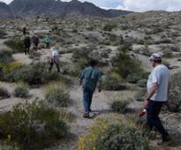 Mojave Trail-3867.jpg