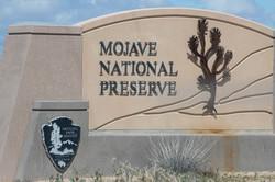 Mojave Trail-9351
