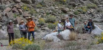 Mojave Trail-3879.jpg